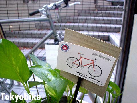 Tokyobike, 555 Friends_24